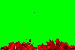 爱心破碎 合在一起 绿屏抠像特效素材绿幕AE教程手机特效图片