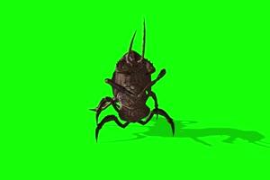 免费蟑螂怪兽 特效牛 绿幕素材 抠像视频 后期特手机特效图片