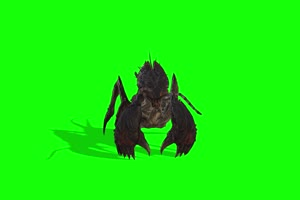 蟋蟀 特效牛 绿幕素材 抠像视频 后期特效素材手机特效图片