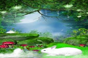 兔子精背景 巧影素材 竖版特效手机特效图片