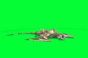 飞龙 翼龙 龙 4 绿屏抠像素