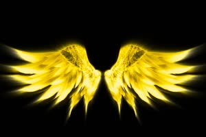 天使翅膀 金色翅膀 翅膀 黑幕背景 抠像素材 特效手机特效图片