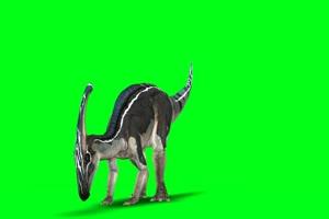恐龙 动物绿幕视频素材下载 @特效牛绿幕素材网手机特效图片