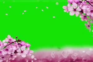 2018 情人节 3爱心 520 绿屏抠像素材手机特效图片