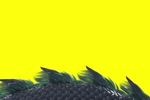 青龙纯净版 绿幕抠像 视频素材 巧影AE 剪映特效手机特效图片