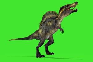 恐龙7 绿屏动物 特效视频 抠像视频 巧影ae素材手机特效图片