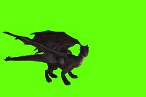 黑色翼龙侧面 绿幕视频 绿幕素材 剪映抠像素材手机特效图片