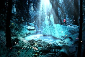唯美森林 梦幻森林 仙境 背景视频下载25手机特效图片