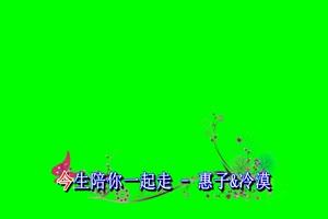 今生陪你一起走 绿屏抠像绿布和绿幕视频抠像素材