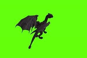 4K 黑色翼龙落地后面 绿幕动物视频抠像视频素材手机特效图片