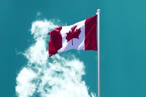 加拿大 国旗绿幕后期抠像视频特效素材@特效牛免手机特效图片