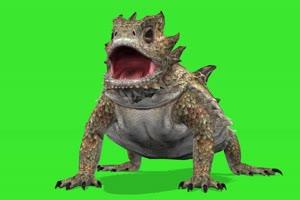 蟾蜍怪 绿屏动物 特效视频 抠像视频 巧影ae素材手机特效图片