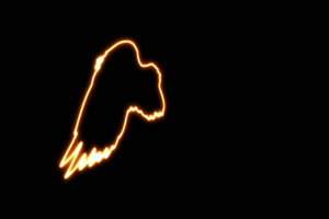 免费左边 天使 翅膀 手绘发光线条霓虹闪烁图形手机特效图片